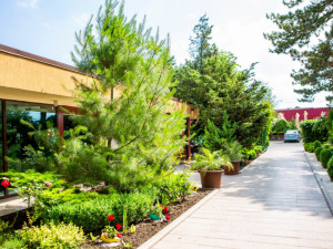 Complex Hotelier CLUB DUNAREA - Eforie Nord