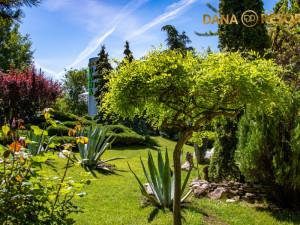 Hotel DANA RESORT - Venus