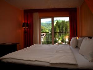 ATRIUM HOTEL MOUNTAIN VIEW
