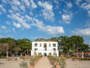 Hacienda De Mare - Olimp
